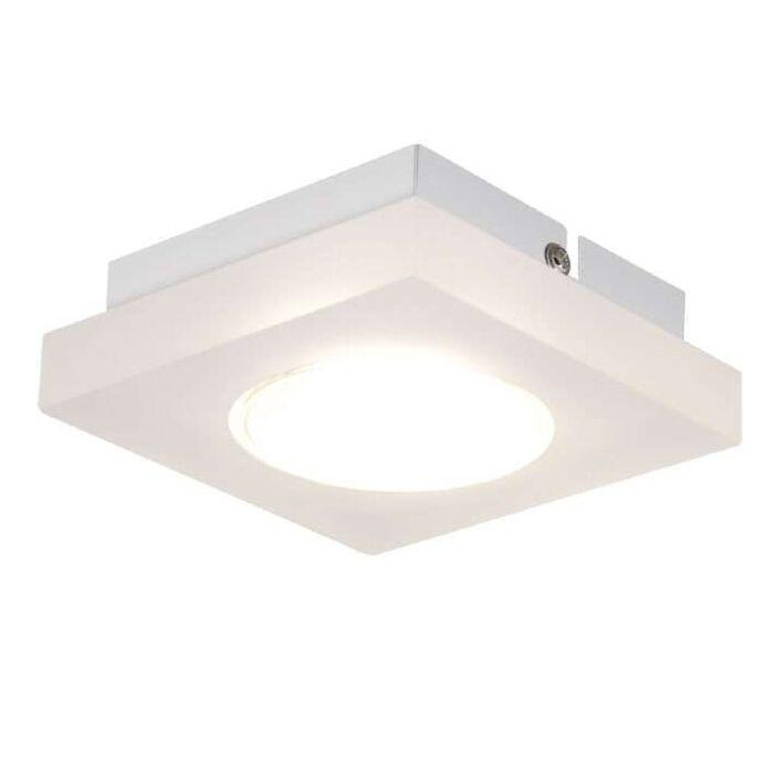 Stropní-svítidlo-Donna-1-Square